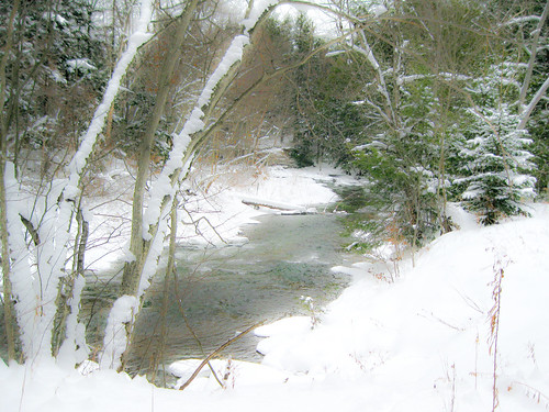 Chautauqua Creek-7
