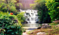 Mayan Temple Falls (Film)