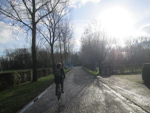 Biking on the Cobbles