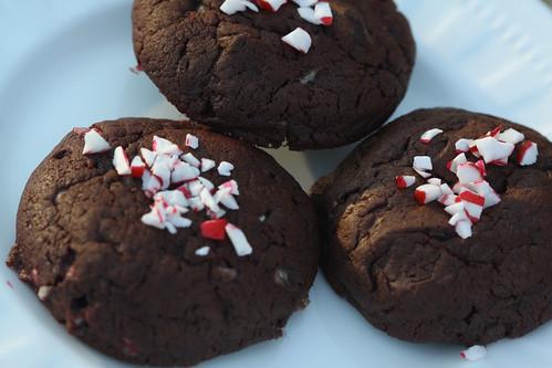 Choco Peppermint Crinkle2