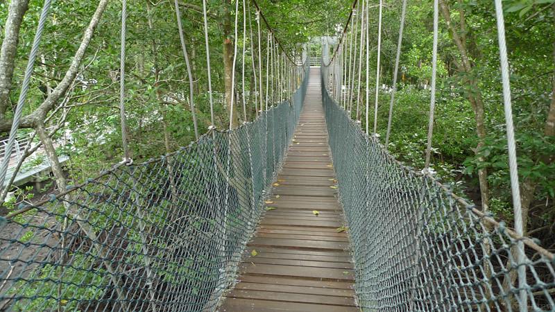 Taman Paya Bakau - 18