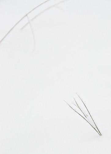 small winter scenes