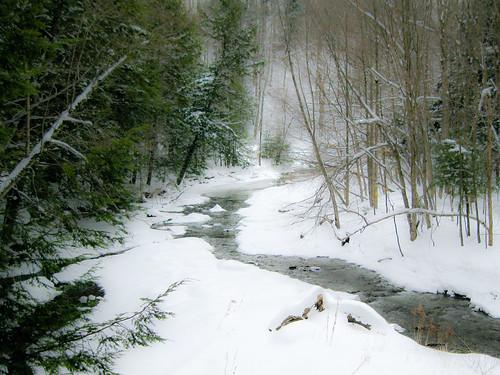 Chautauqua Creek-9