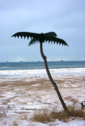Not quite the tropics