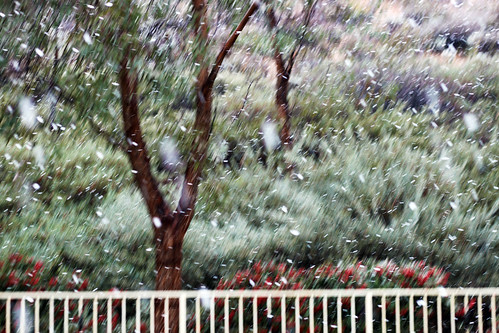 Valencia-Snow-1