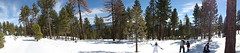 Panorama Snowball Fight at Frasier Park CA