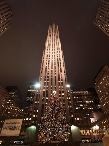Dezember-Baum