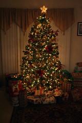 My Mom's Gorgeous Tree!
