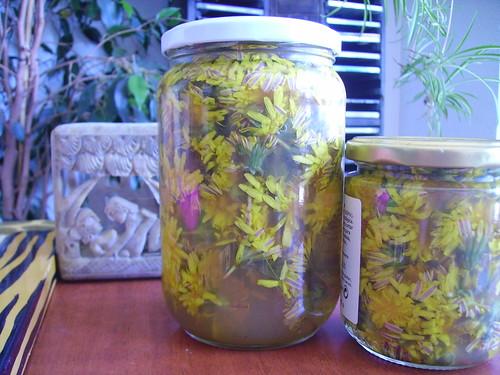 Dandelion vinegar by DivineMissEm