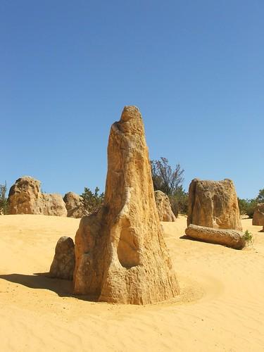 Nambung National Park 7