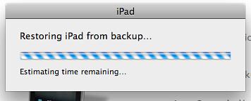 iPad Bypass 06