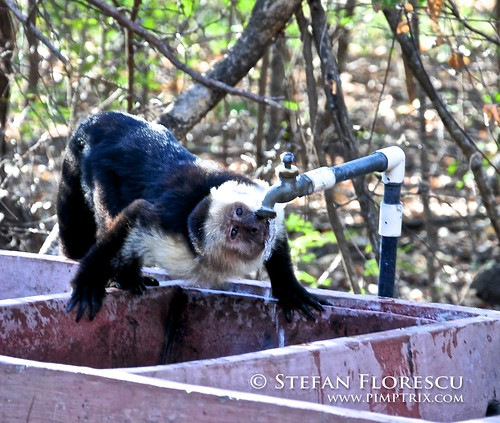 KLR 650 Trip Nicaragua 25