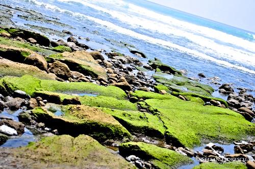 KLR 650 Trip Costa Rica 221