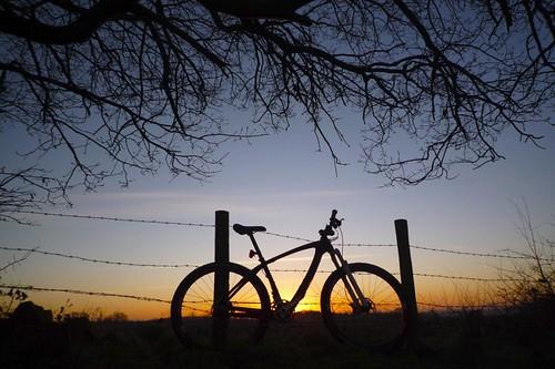 29er sunrise