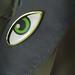 Ögat - Hjälp oss att se