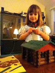 princess & log cabin