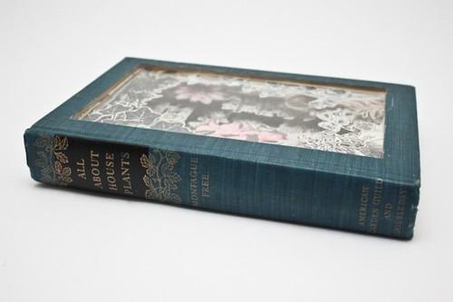 Julia Field Book Carvings 1a