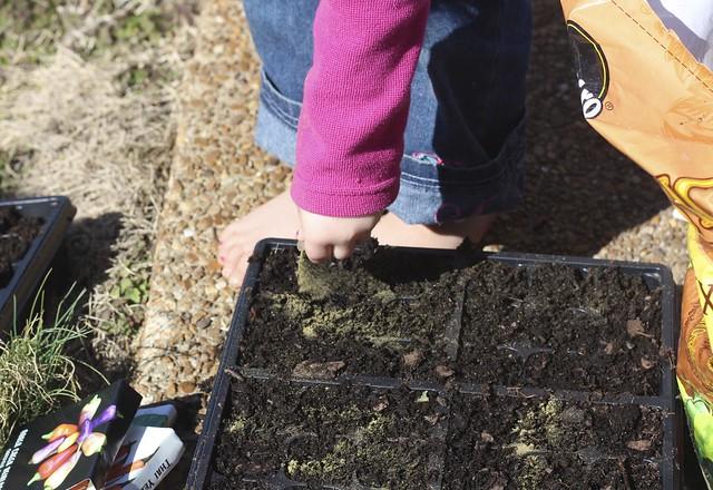 Doodles Sprinkling Ultimate Defense on Seedling Soil