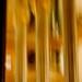 Sagrada Família 4