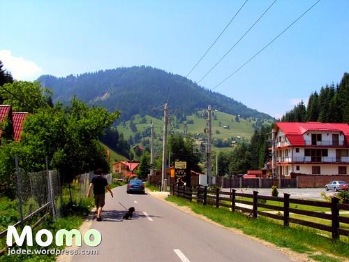 Momo in Transylvania by zannnielim