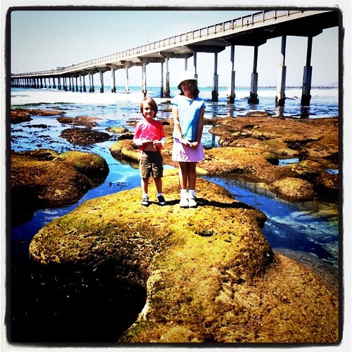 Happy Thing: An Afternoon at the Tidepools with my Goofy Kids