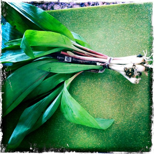First Ramps of the season