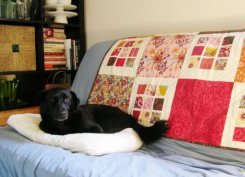 Simon's cozy spot