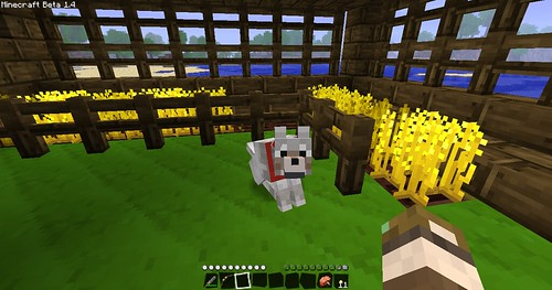 Minecraft - My Wolfie