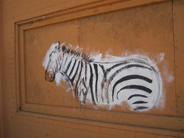 Street Art Zebra, Tucson, AZ