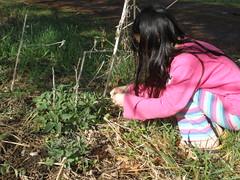 Olivia Picking Catnip