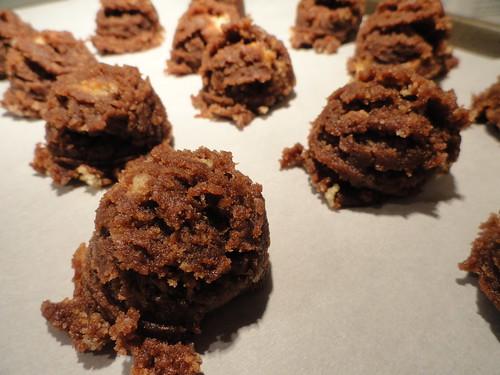 Chocolate Baby Bites