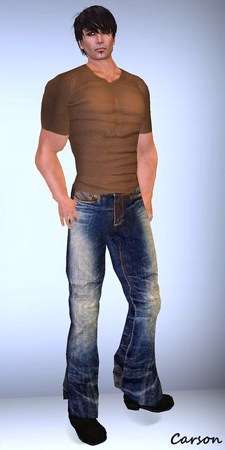 Bella's - Contaminated Jeans and Brown VNeck Shirt