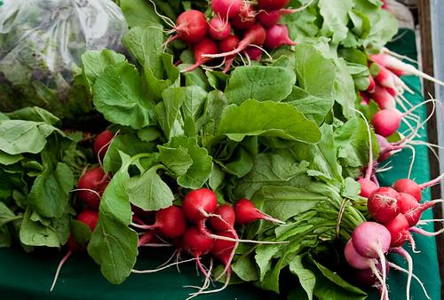 Kitsilano Farmers Market: radishes