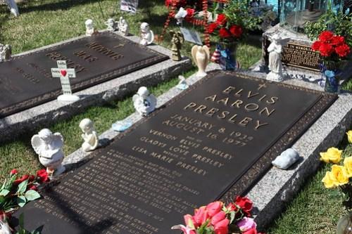 Morbid Graceland