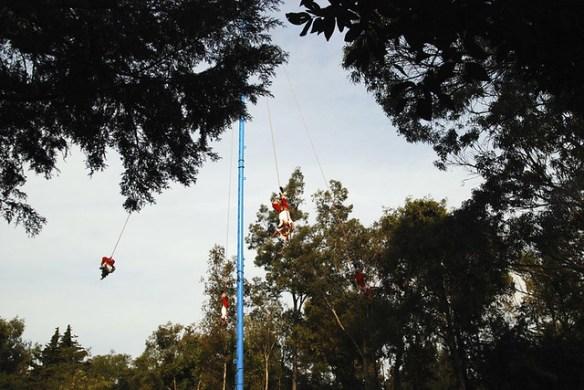 Volando en el bosque de Chapultepec