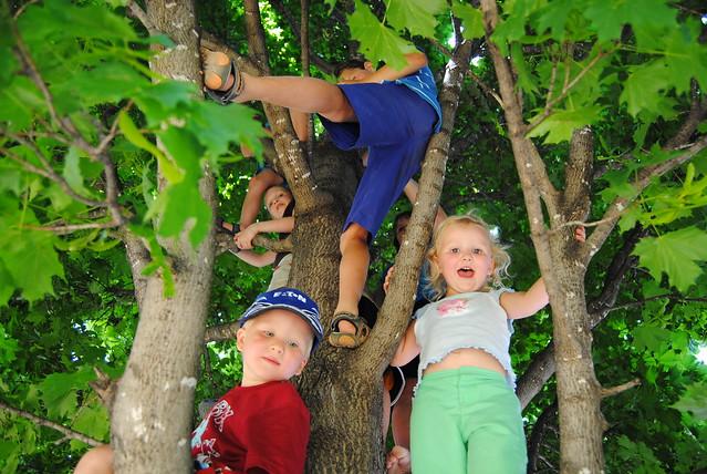 June 2011 Zoo 201