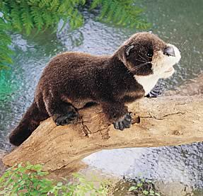 furry brown and cream otter puppet on a wooden log