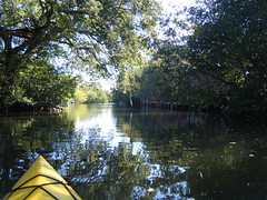 Rowse Road Canal