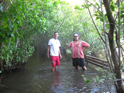 Lower Francis Way 'Trail'