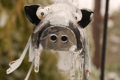 icecow