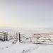 Gateway to The Big Freeze