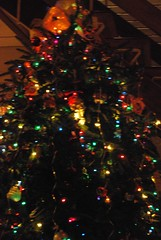 In-laws' tree