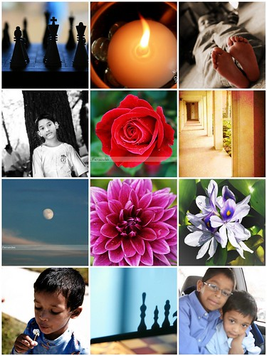 Mosaic of 2010 pictures