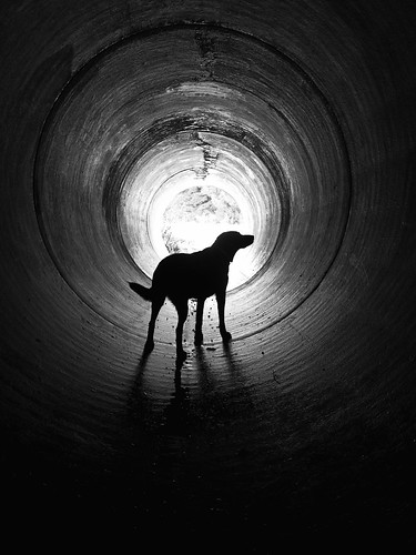 The Light At The End Of A Tunnel Is Not A Train