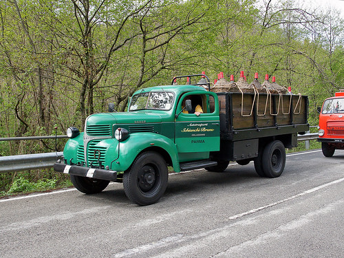 Dodge D15