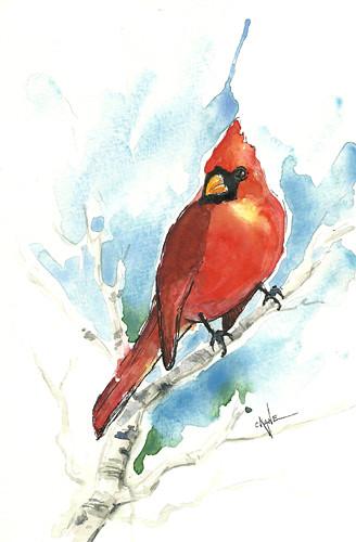 20101225_cardinal
