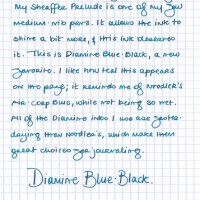 Not an ink test: Diamine Blue-Black.