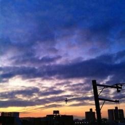 (^o^)ノ < おはよー! 今朝の大阪です。