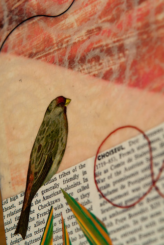 bird collage-3
