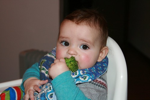 First food - broccoli
